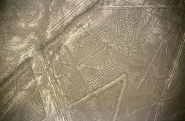 Géoglyphes de Nazca — Wikipédia