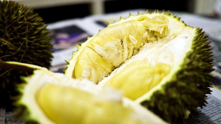 durian season 2013