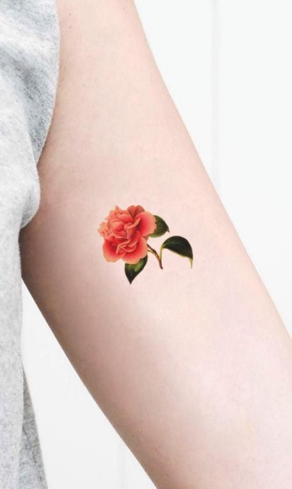 Red Camellia Temporary Tattoo Symbol Of Love Sacrifice Gift For Vintage Image Lovers Speak The Flowers Language Temp Tat Small Size Flower Tattoo Meanings Tattoos Trendy Flowers