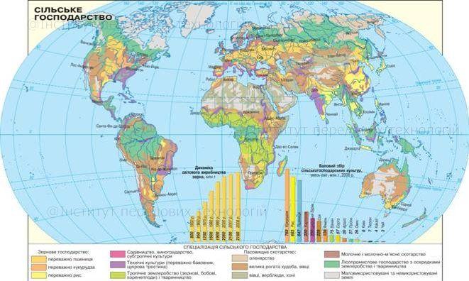 § 18 Мировое сельское хозяйство: значение, внутриотраслевая структура, межотраслевые связи, аграрные отношения. Крупнейшие сельскохозяйственные районы