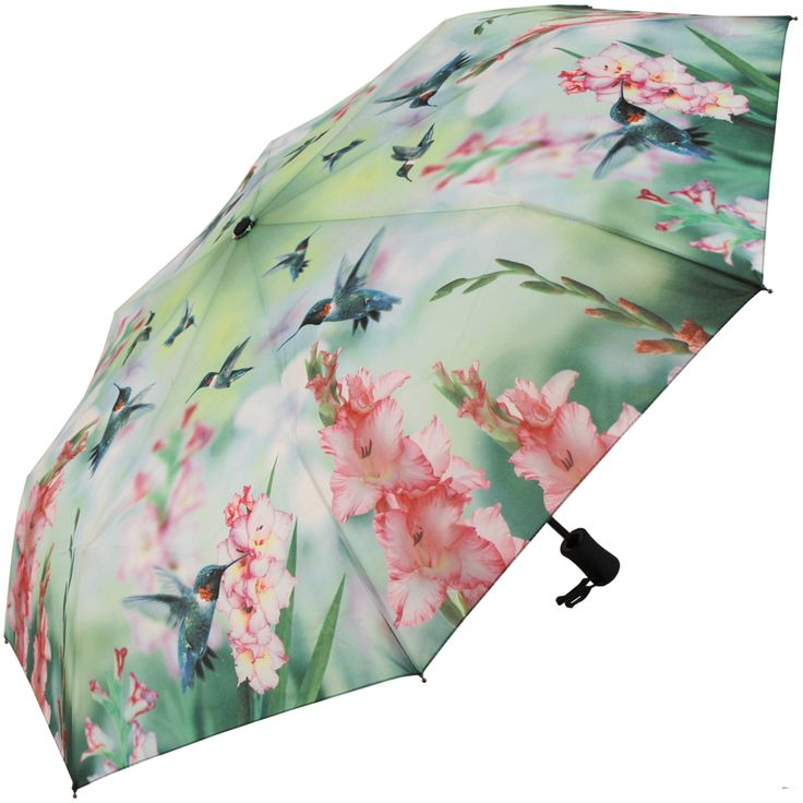 Hummingbirds Auto Open & Close Folding Umbrella by Coyne's & Co - Brolliesgalore