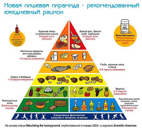 U-интервью с диетологом: О здравом отношении к здоровью человека вообще и кормящей мамы в частности / Здоровье