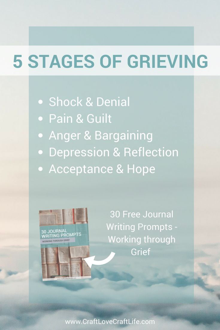 Pet Loss | Stages of Grieving | Grief Support