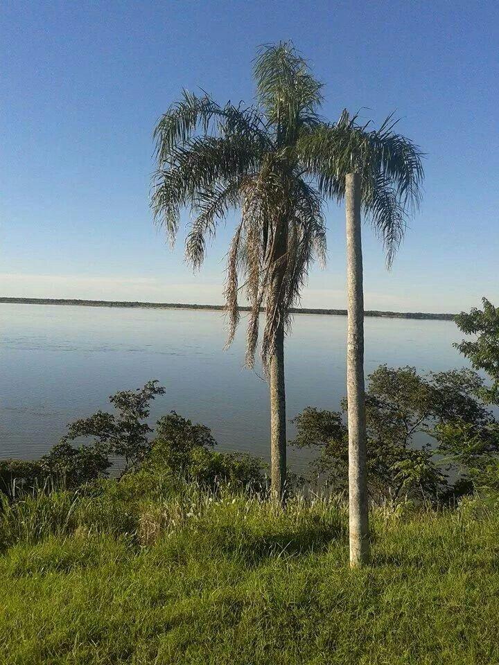 Rio parana  corrientes argentina.