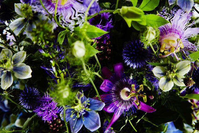 トケイソウで思い出がよみがえりますように - 花のない花屋 - 朝日新聞デジタル&w