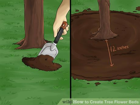 Image titled Create Tree Flower Beds Step 1