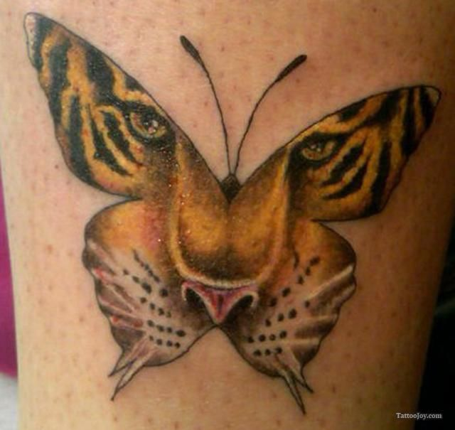 Tigerface Butterfly Tattoo