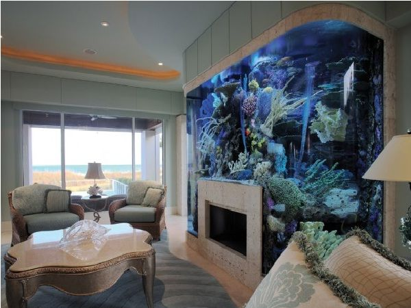 17 best images about unique fish tanks on pinterest for Fish tank fireplace