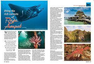 Onderwaterfoto's door Don Silock