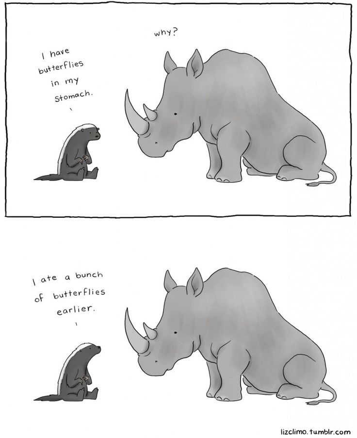 Butterflies ...  Illustration by Liz Climo