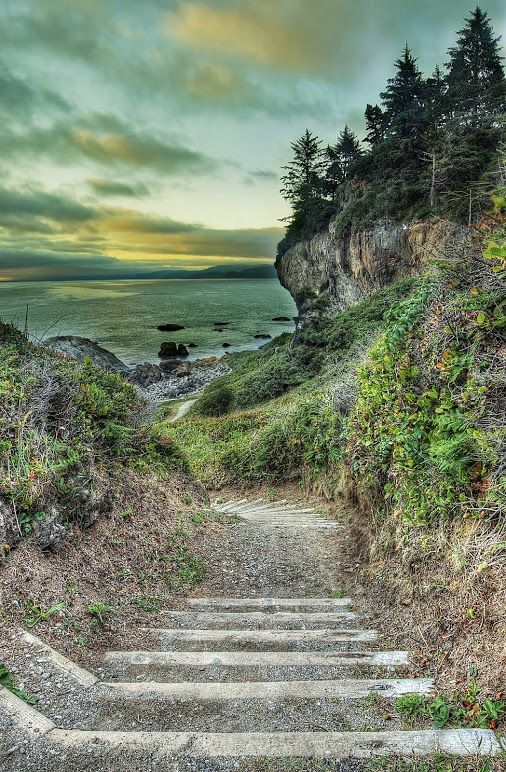 Patrick's Point State Park in Northern California.... // Premium Canvas Prints & Posters // www.palaceprints.com