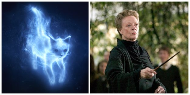 What's Your Patronus? | You're a brilliant person with a sarcastic flare and you enjoy a quiet life. You believe in equality and discourage special treatment, which makes you morally good and trustworthy. Your Patronus takes the form of a cat, the same as Minerva McGonagall. Now please continue to annoy the heck out of Umbridge; it's such an enjoyable experience.