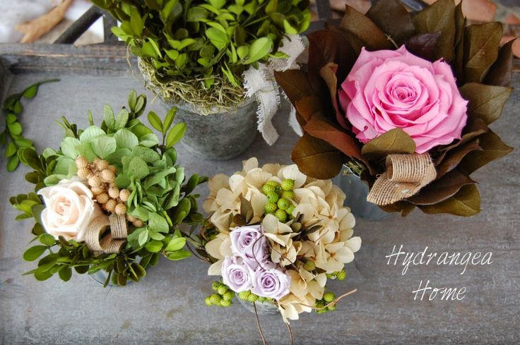 Hydrangea Home by Dawn's Designs: Warning! this post may give you spring fever...#preservedflowers