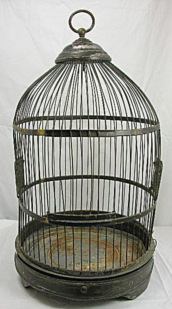 We should totally have an old bird cage with a fake bird in the attic.