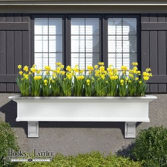 white window box yellow flowers