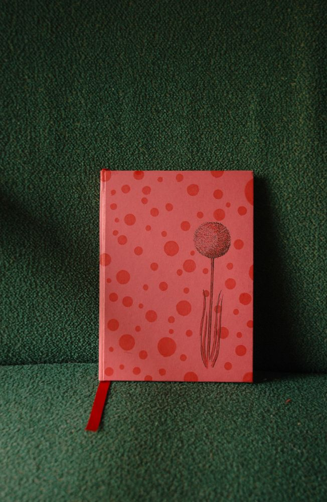 Handmade notebook by Fish without a Bicycle