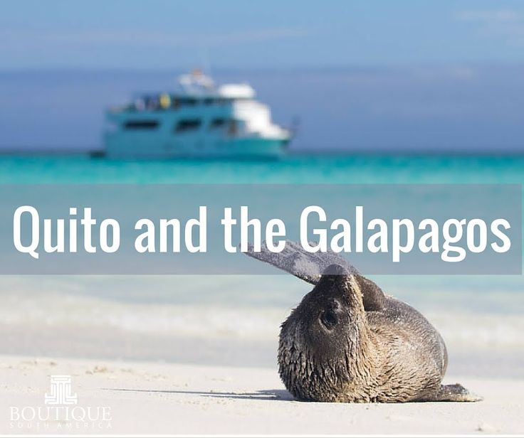 Quito & Galapagos Tour - Travel with Boutique South America