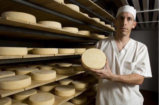 Montreal cheese festival Fête des fromages d'ici runs in February 2017 featuring three days of free, unlimited dairy.