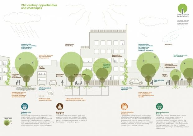 Using trees as green infrastructure