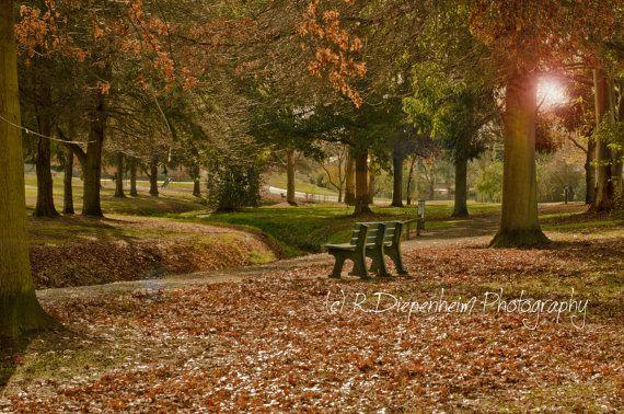Autumn in the Wetlands  digital download by RDiepenheimFoto, $10.00