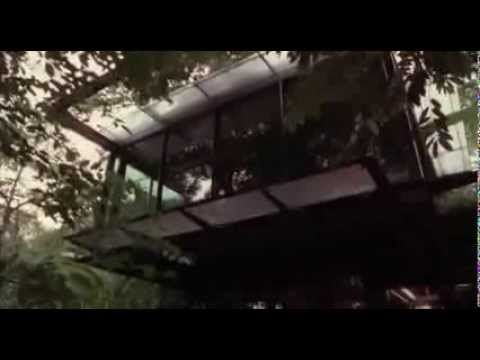 Watch Full movie with STEVEN SEGAL  ........Belly of the Beast Full Movie Steven Seagal Action