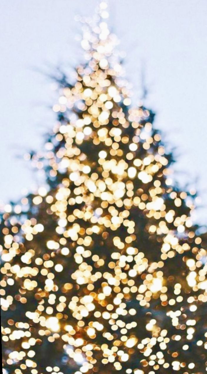Christmas Lights Aesthetic White Snowy Allwhiteeverything Everythingwhite Wallpaper Iphone Christmas Christmas Lights Wallpaper Christmas Wallpaper