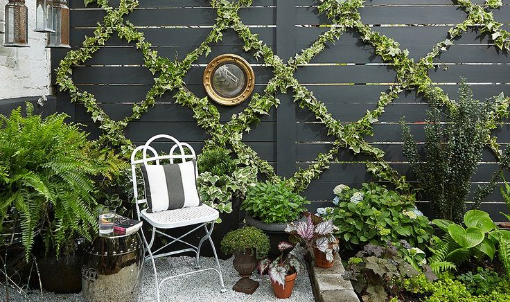 This simple DIY ivy trellis couldn't be easier.
