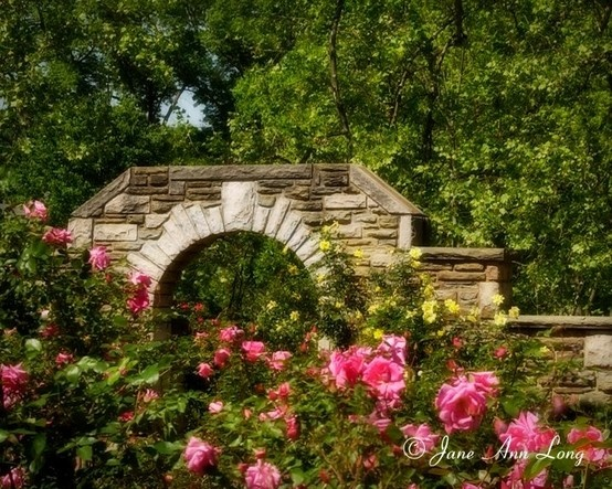 13 Best Images About Leu Gardens Weddings On Pinterest: 55 Best Images About Huntington, WV On Pinterest