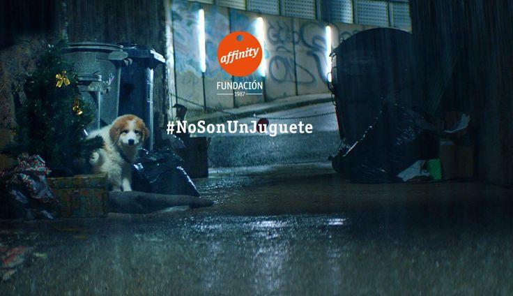 Fundación Affinity Recuerda Que Las Mascotas No Son Un Juguete