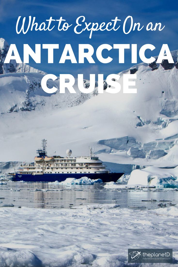 Practical travel tips for booking an Antarctica Cruise. Everything you should know before embarking on the adventure of a lifetime! | Blog by The Planet D: Canada's Adventure Travel Couple