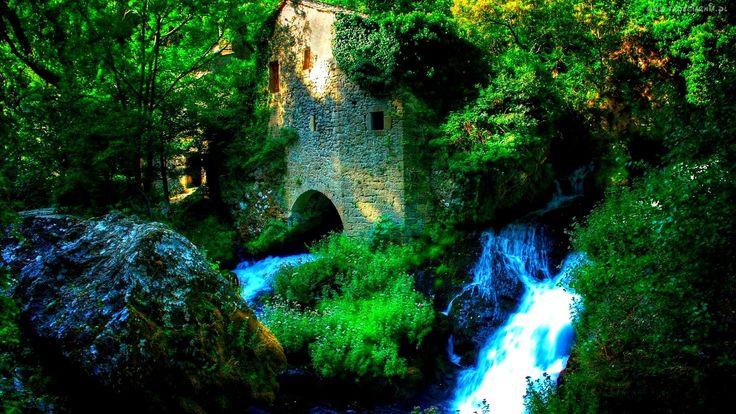 Wodospad, Ruiny, Drzewa