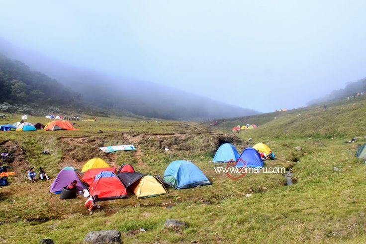Silahkan baca artikel Tips Memilih Lokasi Camping yang Tepat ini selengkapnya di Cemaru - Borneo Images