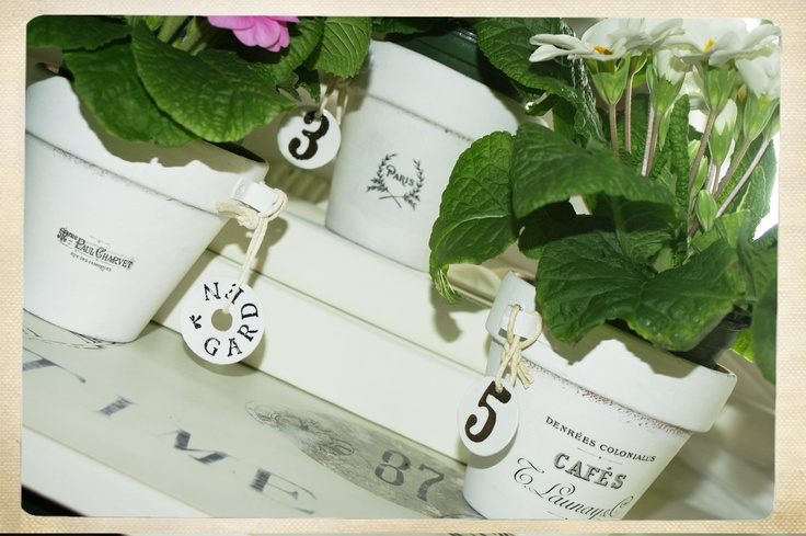 I painted the clay pots with White Cottage Paint, added an image transfer and Metal Tag or washer (also painted with Cottage Paint) and then filled them with Primulas.