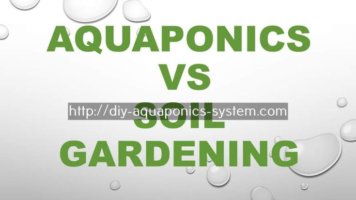step by step aquaponics - used aquaponics system for sale.fish and garden system 2126865824