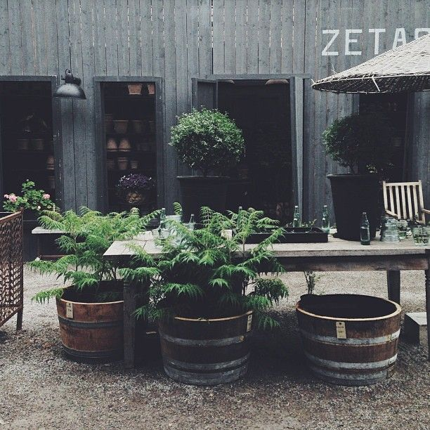 .@Zeta Howell Howell Spooner-Hazeltine Finsmakarens Trädgård | Zetas Finsmakarens Trädgård