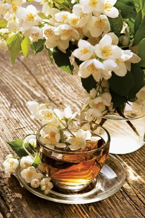 Tea:  A cup of jasmine tea with blossoms.