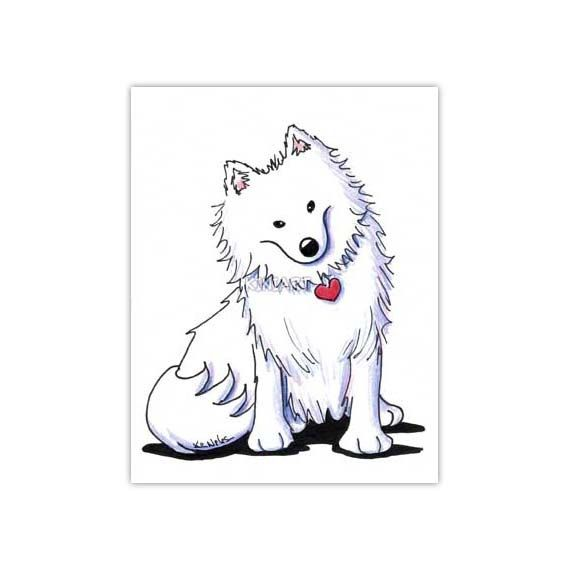 1000  ideas about american eskimo puppy on pinterest