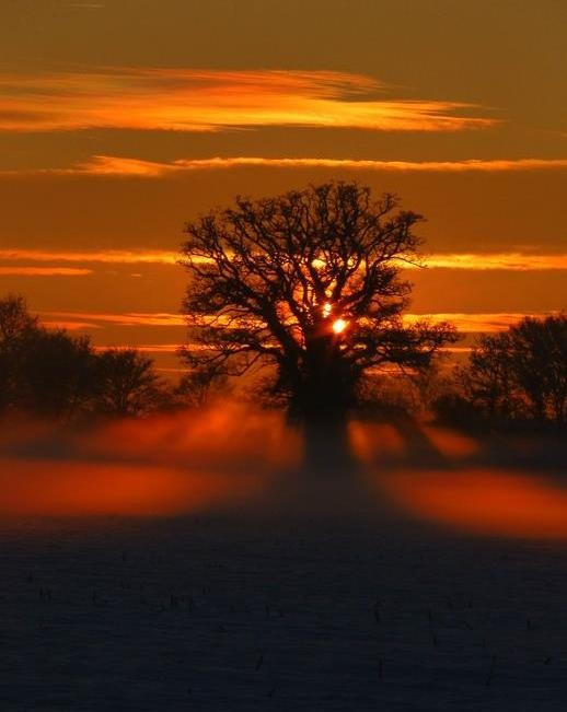 Entry #5: #HTCWinter #8X #Competition Snowy Suffolk Sunset by Martin O'Keeffe