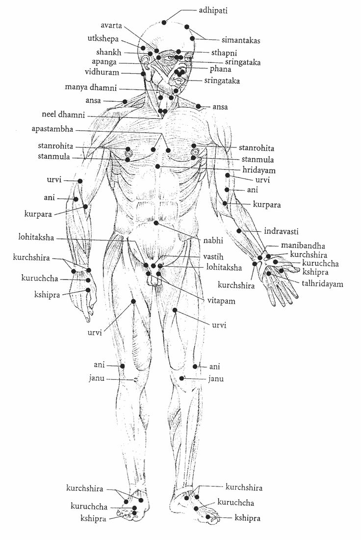 ayurveda pressure points -marma points, similar to meridians in Chinese Medicine....  Ayurvedic Massage: Ayurveda