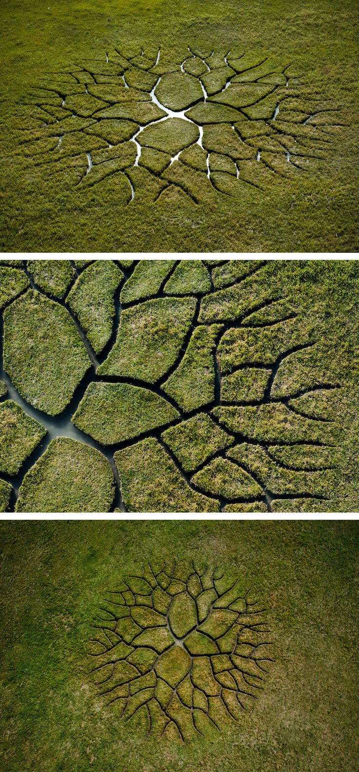 Artist Krisztián Balogh created land art called World Tree. The striking site-specific installation featured a series of small interconnected streams.