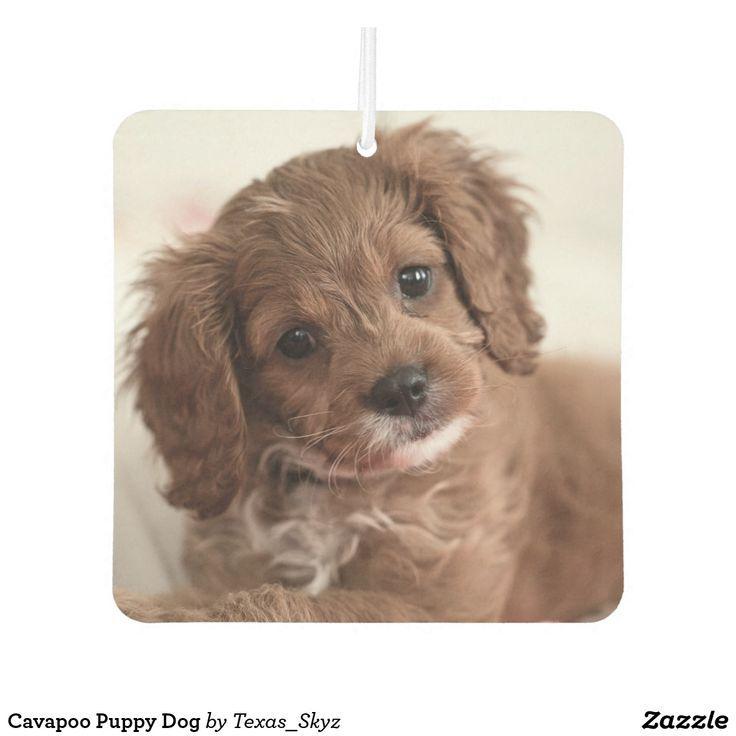 Cavapoo Puppy Dog Air Freshener