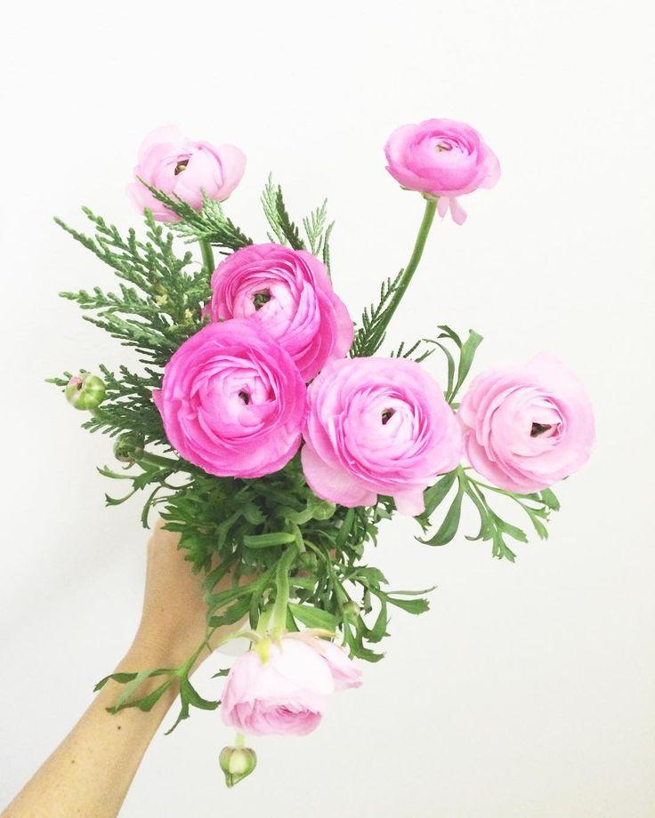 Noi possiamo parlare, ribatté il Giglio Tigrato, quando c'è qualcuno con cui valga la pena di farlo.  E tutti i fiori possono parlare? Esattamente come te, dichiarò il Giglio Tigrato. E anche molto più forte.  Alice nel paese delle meraviglie/ Il giardino dei fiori parlanti ⭐️🌸 #instaflower #instamoments #instamood #flowers #pinky #pink #cosebelle #beauty #beauties #instabook #libri #leggere #instalibri #amoilibri #lewiscarroll #aliceinwonderland #libridaleggere #rosa #picoftheday…