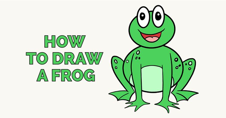 How to Draw a Frog in a Few Easy Steps   Easy Drawing ...