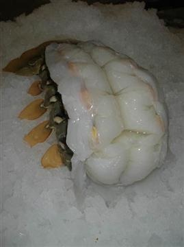 Jumbo Australian Lobster Tails (16-20 oz.) The FINEST LOBSTER in the WORLD!  Find it .  Free Home Delivery Anywhere In California. Visit www.GiovannisFish.com and use coupon code: PINTEREST