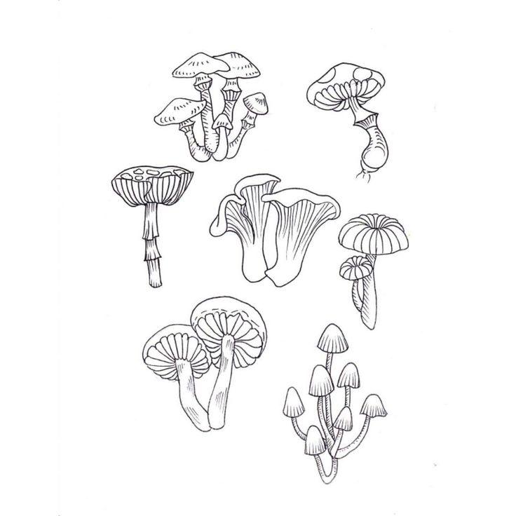 The 25+ best Mushroom tattoos ideas on Pinterest