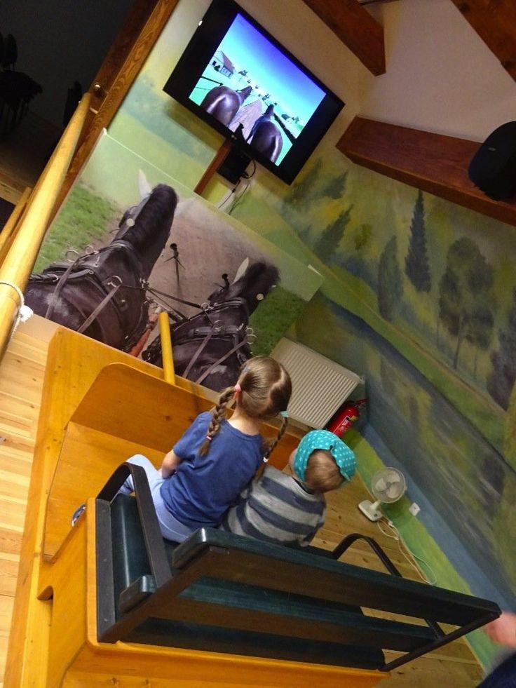Muzeum Kladrubského vraníka - povoz v muzeu