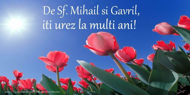 De Sf. Mihail si Gavril, iti urez La multi ani!