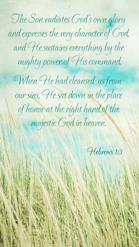 Hebrews 1:3    The Son radiates God's own glory, and expresses the very character of God...