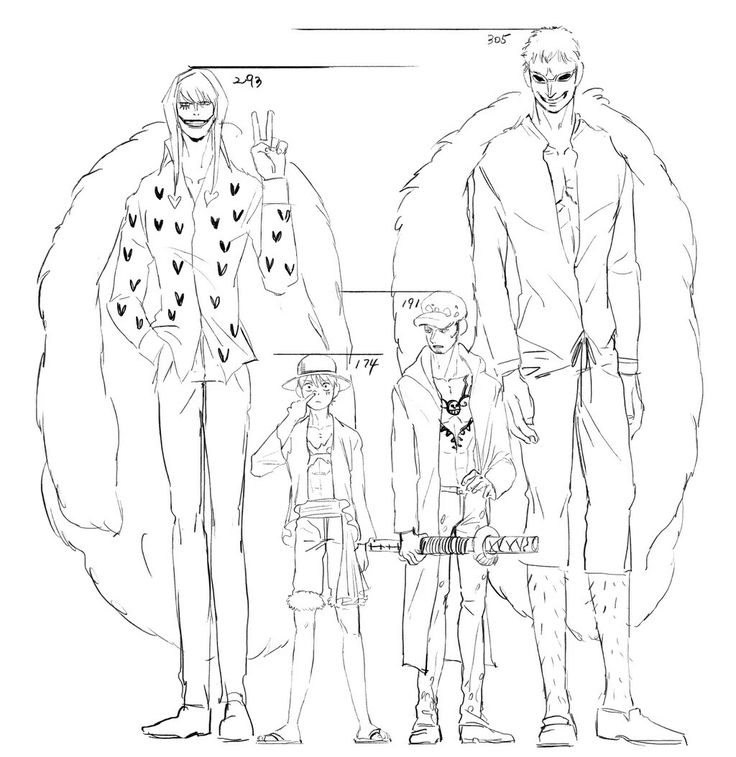 One piece height - Doflamingo, Rosinante, Law and Luffy