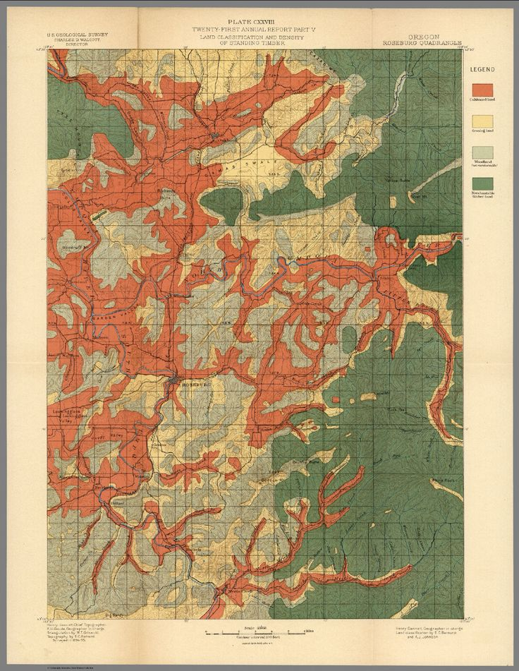 Best Vintage Infographics And Maps Images On Pinterest - Us lumber industry map 1900